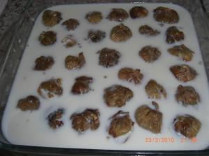 cevizli-incir-dolmasi-incir-tatlisi-tarifi-5
